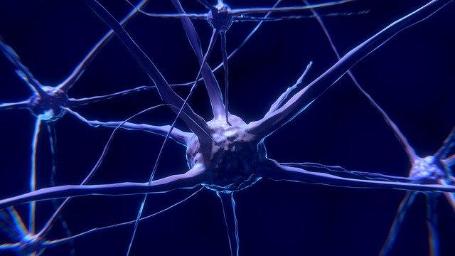 Ciri ciri Anak Terkena Epilepsi